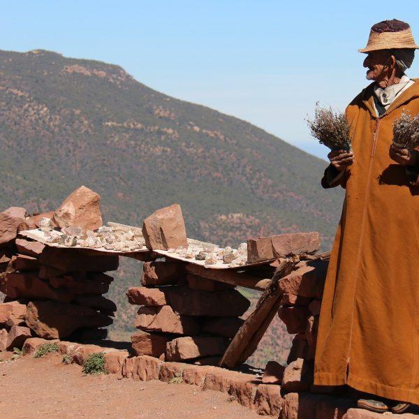 Zed Tours Morocco Recce